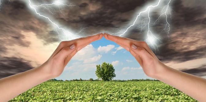 Rapporto Ismea sulla gestione del rischio in Italia: il mercato assicurativo agricolo vale 7,2 miliardi di euro